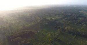 Enorme monumento Maya en México es el más grande y más antiguo jamás descubierto, los arqueólogos revelan