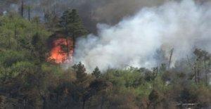 Hasta 200 bomberos de hacer frente a tres incendios forestales