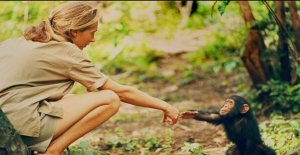 Jane Goodall dice que la humanidad está condenada al fracaso si no cambiamos después de esta pandemia