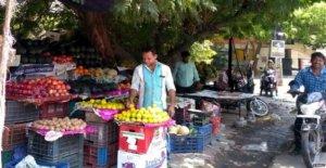 Comerciantes ambulantes de perder el derecho de sombra' bajo los árboles
