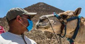 Cómo coronavirus ha echado por tierra las esperanzas para el turismo en Egipto