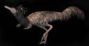 Extraño 'Capitán garfio' dinosaurio con las uñas largas, descubierto en Montana Badlands
