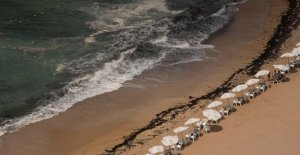 Las 11 personas que se ahogó en una playa rocosa en el norte de Egipto