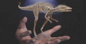Los fósiles revelan dinosaurio precursor más pequeño que un teléfono móvil