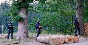 Manhunt en Alemania para el hombre que desarmó a 4 agentes de la policía