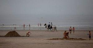 Belga de la playa de pelea de combustibles virus, política, clima de tensión