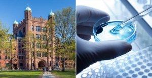 De la universidad de Yale rápido COVID-19 de prueba de la saliva recibe la FDA autorización de uso de emergencia