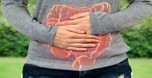 Infección parasitaria brote en Texas enferma 82 personas