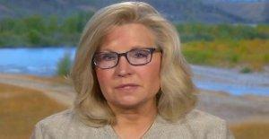 Liz Cheney llamadas Kamala Harris, 'radical', dice su registro de votantes está a la izquierda de Bernie Sanders