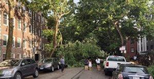 Mujer de Indiana muerto en la tormenta, encontró agarrando bisnieto, 4, interior de la casa: informe