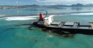 ¿Por qué Mauricio derrame de petróleo es tan grave