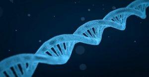 Los cánceres del aparato digestivo, los nuevos datos de eficacia de la terapia dirigida