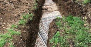 Mosaico romano encontrado piso bajo viñedo italiano