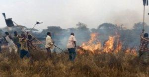 Enorme Kenia contra los incendios forestales, finalmente, poner de espera después de dos días