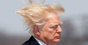 Trump dice de baja presión de las duchas no lava