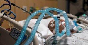 Florida confirma su primer caso de la nueva cepa de coronavirus